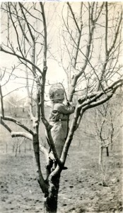 Catherine Roberts, my mother, in an apple tree 1920.